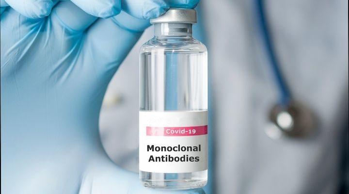 Anticorpos monoclonais: tecnologia que busca um tratamento contra a covid-19